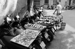 Mopeds taugen auch zum Trocknen von Fischen